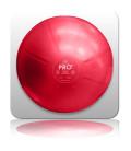 AOK MediBall® Pro 65cm