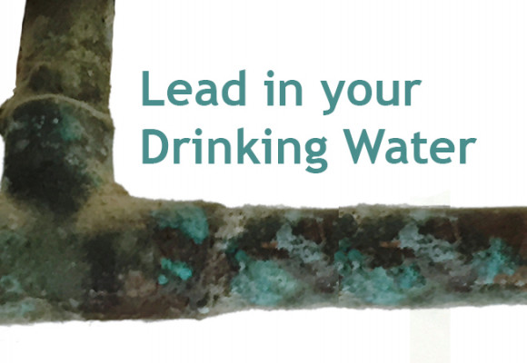 Lead Contamination in Water