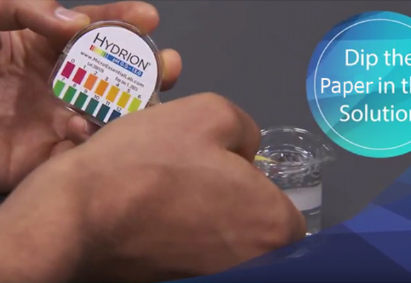 How to Use Your pH Litmus Paper