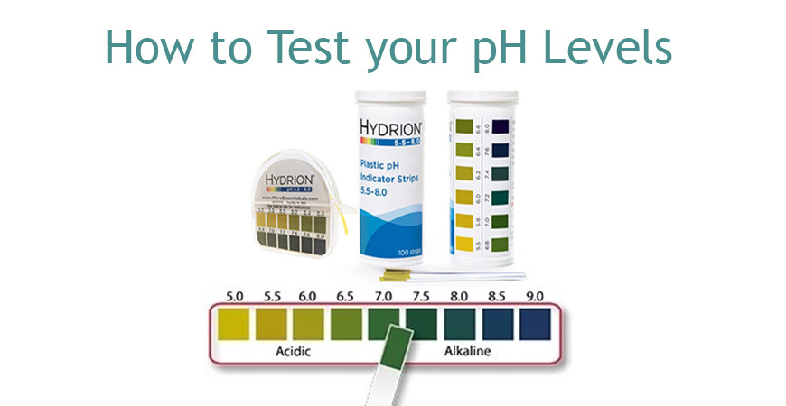How to Test Your pH Levels